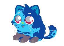 File:Random kitty.jpg