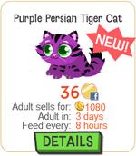 Purple Persian Tiger Cat New