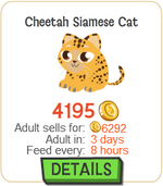 Cheetah Siamese Cat New