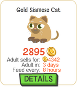 Gold Siamese Cat New