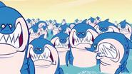 Wp sharks 2