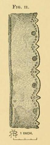 File:Fig-2.jpg