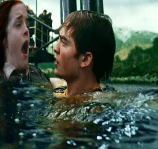 File:Cedric Diggory saving Willa Granger as part of the second task.jpg