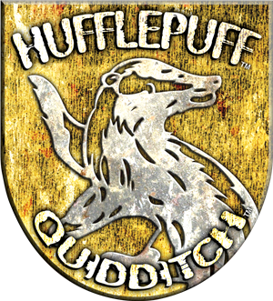File:Hufflepuff Quidditch Badge.png