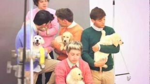 WONDERLAND TV One Direction with puppies - Behind the Scenes of the Cover Full Video