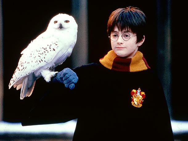 File:Hedwig 610.jpg