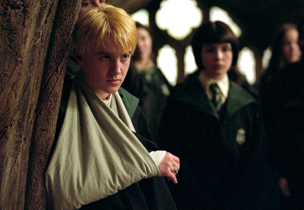 File:Draco pansy.PNG