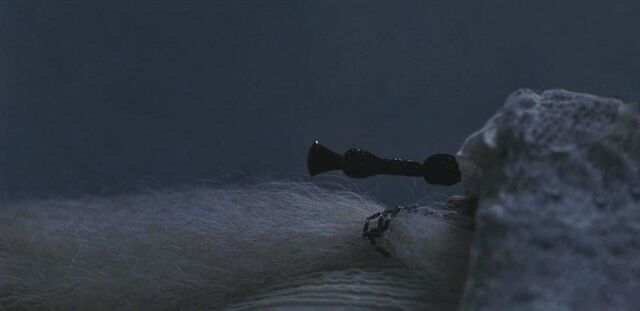 File:Elder wand tumulo.JPG