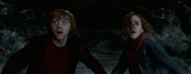 File:Ron, Hermione-chamber of secrets.jpg