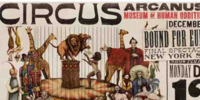 Circus Arcanus