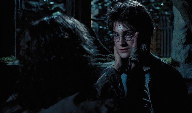 File:Harry and Sirius.jpg