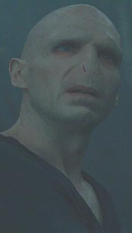 File:Voldemort Profile Infobox.JPG