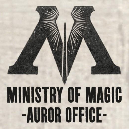 Image result for harry potter auror