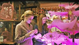 Hermione and Ginny at the Weasley's Wizard Wheezes Shop.JPG
