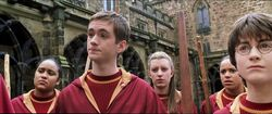 Harry-potter2-movie-gryffindor team