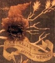 ファイル:Cedrella Weasley.jpg