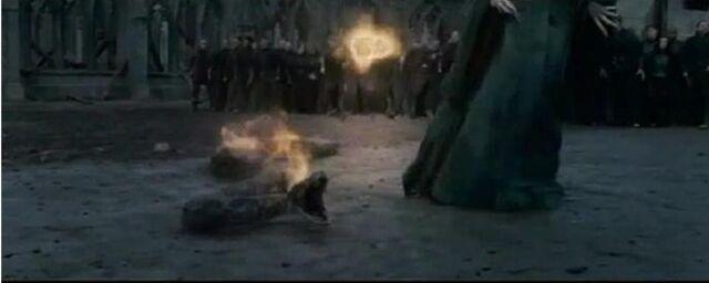File:Harry attacking nagani.jpg