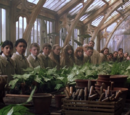 Herbology classroom