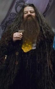 File:Hagridwedding.jpeg