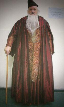 PeterPaulBurrows-Wizard
