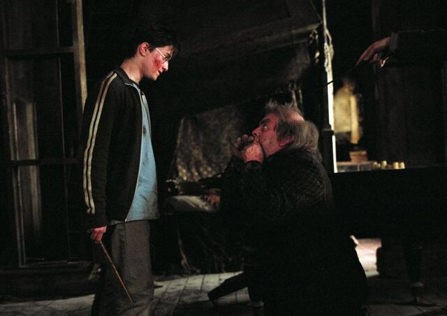 File:Harrry saves Pettigrew.jpg