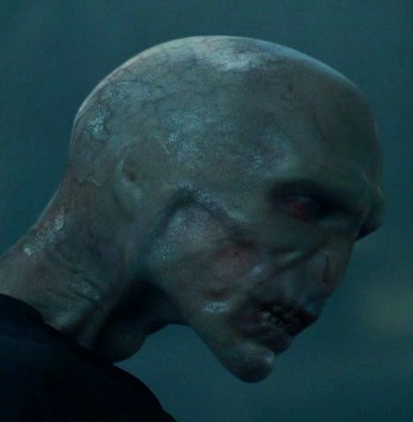 File:Voldemortreturn.jpg