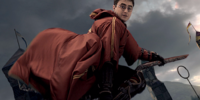 Harry Potter's Firebolt