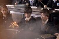 Seamus & Harry.jpg