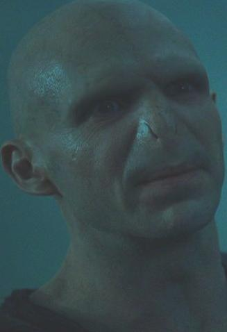 File:Voldemortmug.JPG