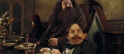 Hagrid and Flitwick at the High Table