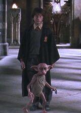 Dobby protecting Harry