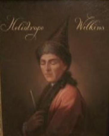 Heliotrope Wilkins
