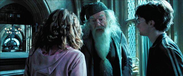 File:Harry, Hermione, & Dumbledore in hospital wing.jpg