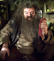 Rubeus Hagrid OOTP.jpg
