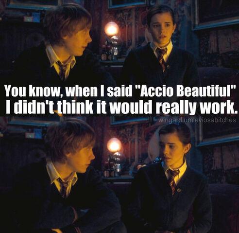 File:Accio-Beautiful-harry-potter-vs-twilight-18451801-500-487.jpg