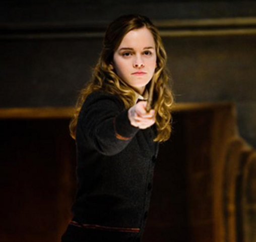 File:HermioneAcceptedCombativePosition.png