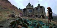 Rubeus Hagrid's pumpkin patch