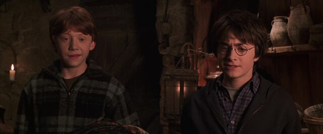 File:Harry-potter2-visit to Hagrid's hut.jpg
