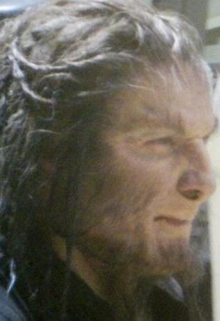 File:Fenrir Greyback Deathly Hallows.jpg
