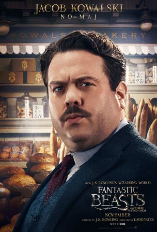File:Fantastic-Beasts-and-Where-to-Find-them-Character-Posters-5.jpg