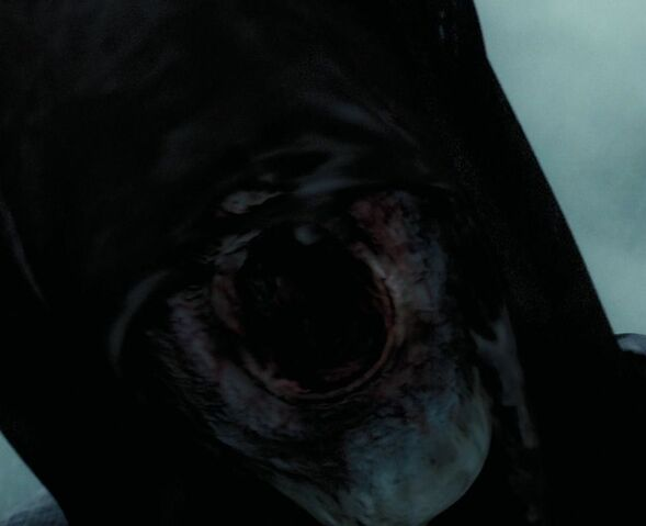 File:Dementors mouth.jpg