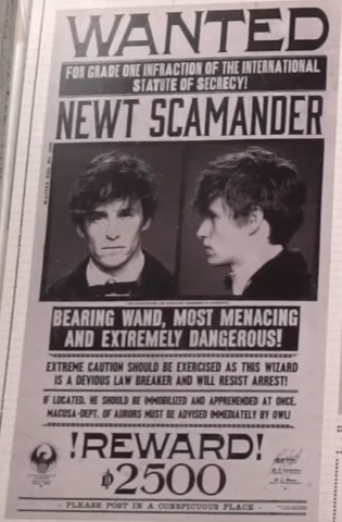 File:Newt Scamander - Wanted poster.png