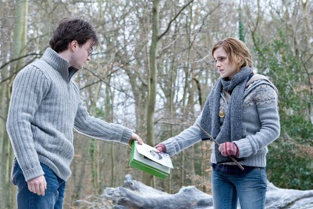 File:Hermione and Harry.jpg