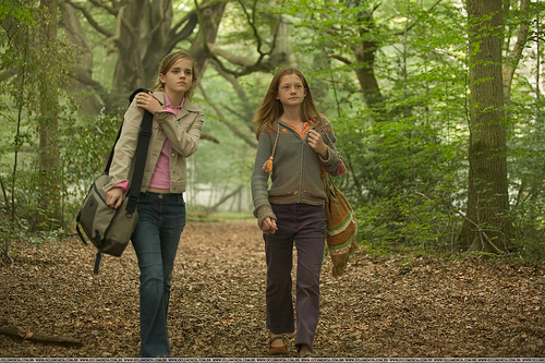 File:Hermione and Ginny.jpg