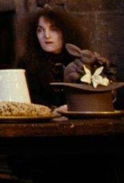 Unidentified female Hogwarts employee (IV)