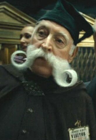 File:Moustache Ministry of Magic visitor.jpg