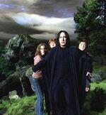 SnapeTrio