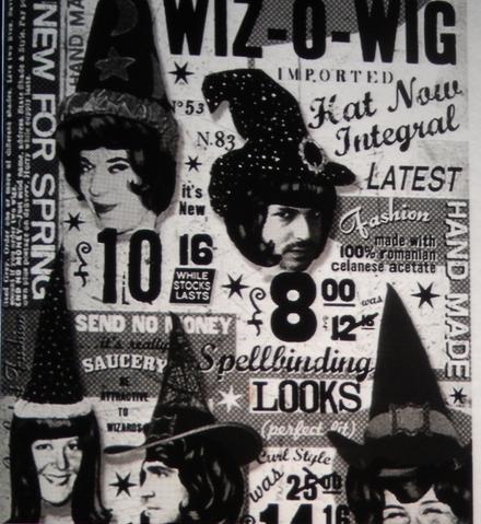 File:Wiz-O-Wig.png