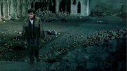 Harry potter after Voldemort