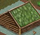 Лесной дом